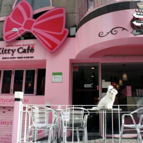 Hello Coffee, Hello Kitty