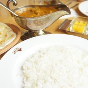 Curry & RiceGirl