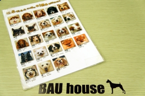 Faces of Bau House