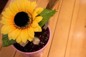 Flower Bingsu Close Up