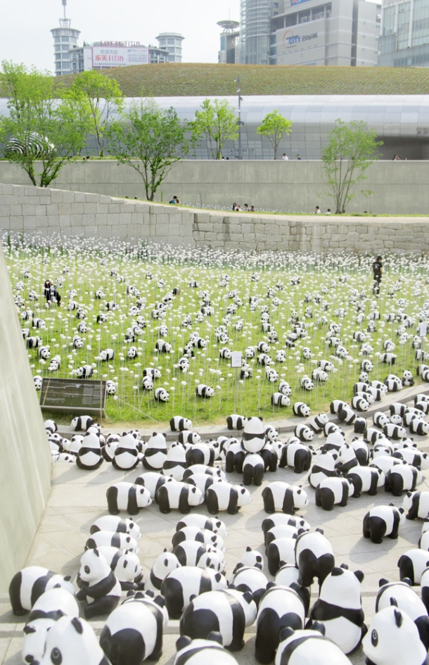 Panda Overflow