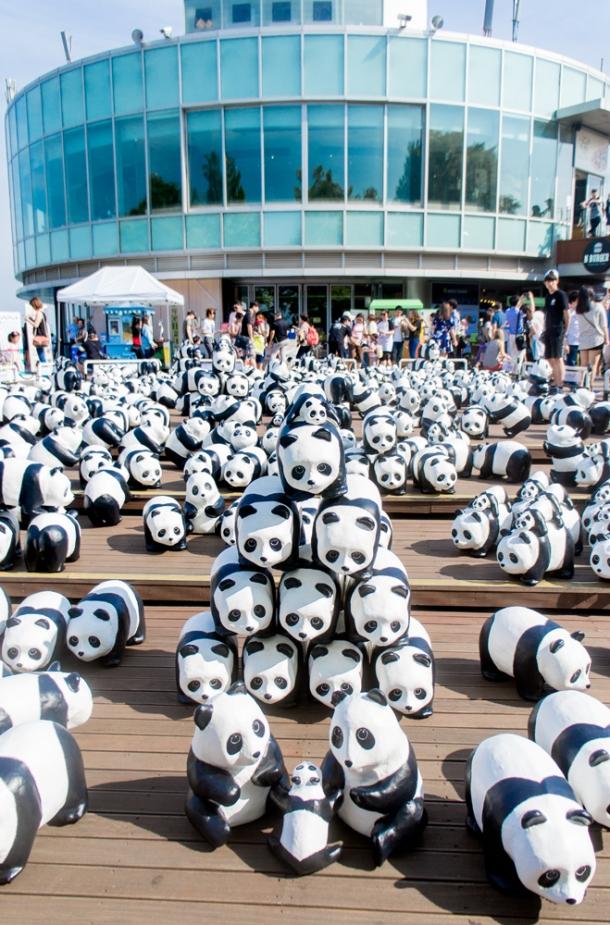1600 Pandas+ N Seoul Tower