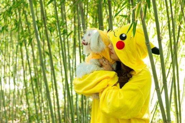 Bamboo Pikachu