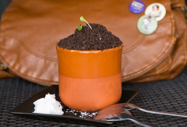 Potted Plant Cake