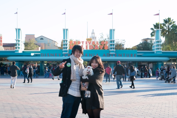 Disney Puppy Love