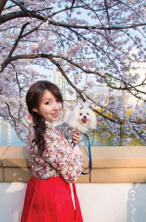 Seokchon Lake Cherry Blossom Festival (석촌호수벚꽃축제)