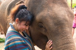 Chiang Mai, Thailand: Elephant Jungle Sanctuary